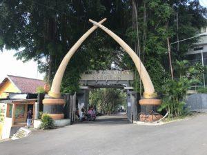 Wisata Sejarah Manusia Di Museum Sangiran Telusuri Nusantara