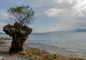 Wisata Batu Capeo
