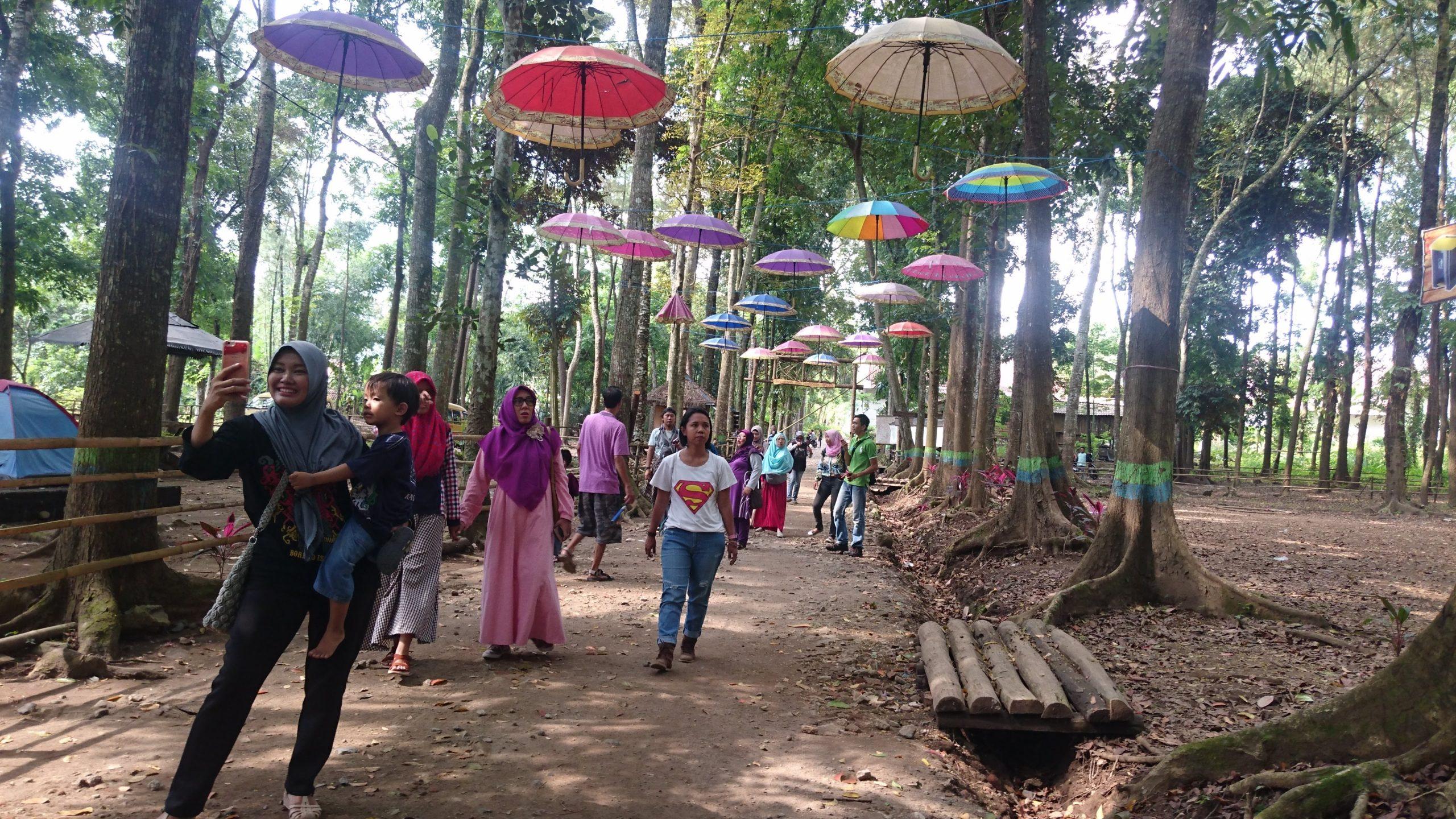 Kotok Forest Park
